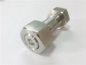 No.75-Высокое качество дуплекс 2205 из нержавеющей стали болт